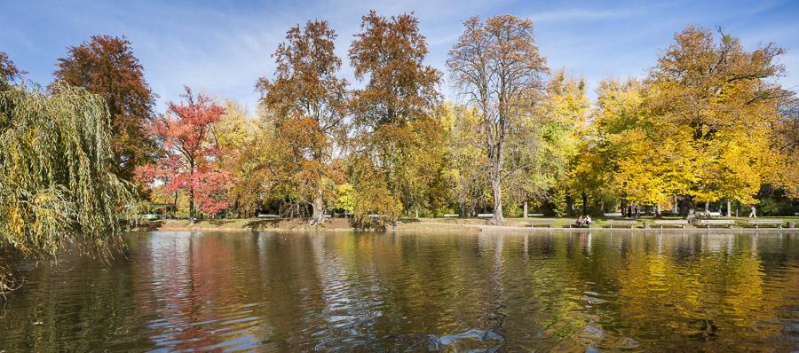 Photographie de paysage d'automne