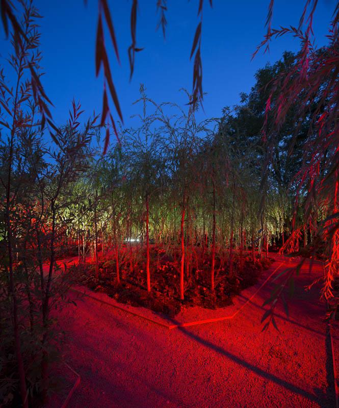 Festival des jardins de Chaumont sur Loire - Photographe Eclairage